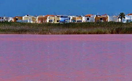 Parque natural lagunas la mata