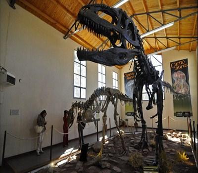 Dinosaurios de Neuquen