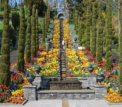 Mainau - Alemania