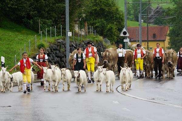 Suiza tradicional