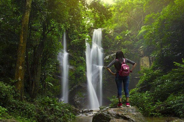 viajero ecologico y natural